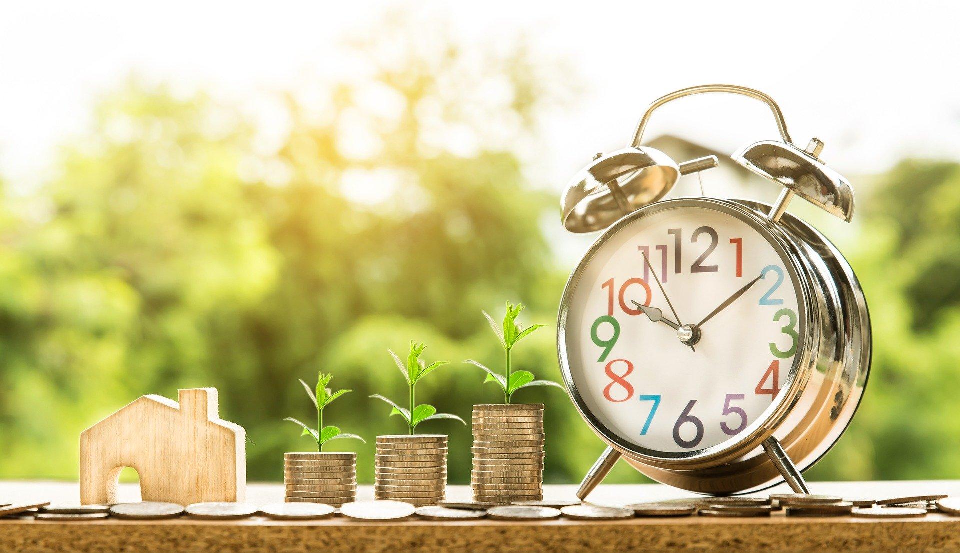 Как обанкротить застройщика: порядок, права дольщиков, выплата долгов