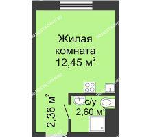 Студия 17,41 м² в ЖК Бурнаковский, дом № 46 - планировка
